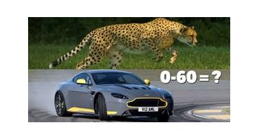 QUIZ! Τι είναι ποιο γρήγορο; Αυτό ή το αυτοκίνητο;