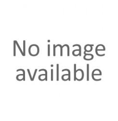 ΑΜΟΡΤΙΣΕΡ-ΓΟΝΑΤΟ ΠΙΣΩ ΑΡΙΣΤΕΡΑ auto (G55598) GABRIEL
